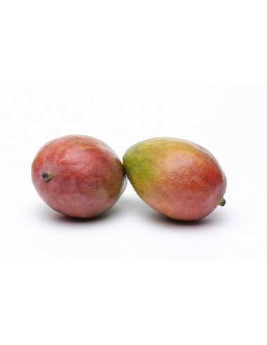 Comprar Mango Extra pieza online