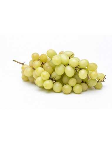 Comprar Uva Blanca extra 500g online