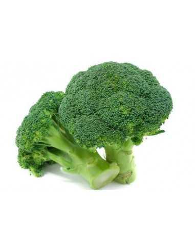Comprar Brócoli pieza online