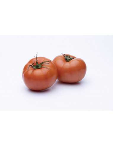 Comprar Tomate Extra Ensalada Kg online