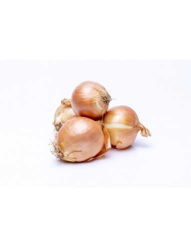 Comprar Cebolla Cocina 500g online