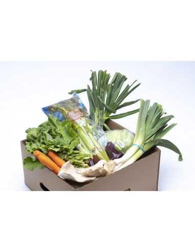 Comprar Caja Frutlovers Hortalizas 7kg online
